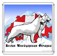 Белая Швейцарская Овчарка #2