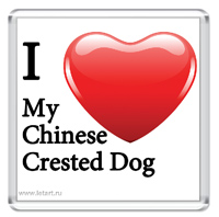 http://www.letart.ru/_mod_files/ce_images/KITAYCI/chinese_crested_dog_i_love_m.jpg