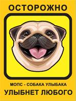 Мопс, Собака Улыбака, желтый фон