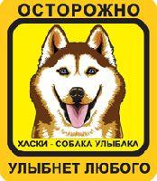 Автомобильная наклейка. Сибирский хаски. Собака улыбака (рыжий хаски с голубыми глазами, желто-оранжевый фон)