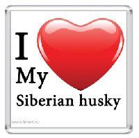 Магнит. I Love My Siberian Husky