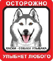 Автомобильная наклейка. Сибирский хаски. Собака улыбака (серый хаски с карими глазами, красно-белый фон)