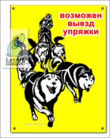 Табличка. Самоедская собака. Выезд упряжки (желтый фон)
