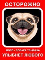 Мопс, Собака Улыбака, красный фон