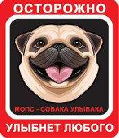 Мопс Собака Улыбака, красно-черный фон