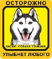 Автомобильная наклейка. Сибирский Хаски. Собака улыбака (черный хаски с карими глазами, желто-оранжевый фон)